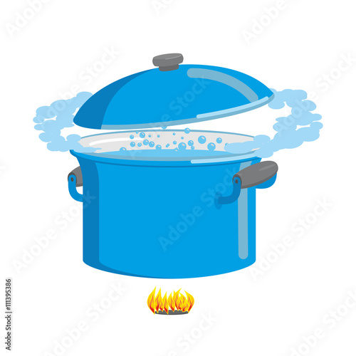 Valokuva  Boiling pot of water. Cookware for cooking