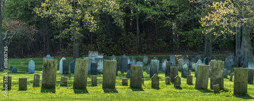 rows of gravestones from the 1800s  in old remote rural graveyard Canvas Print