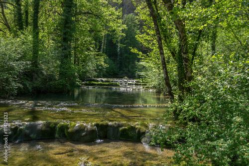 Foto op Canvas Bos rivier Paysage forêt et rivière