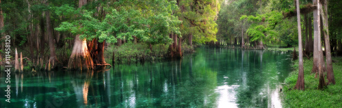 Spoed Foto op Canvas Panoramafoto s Florida spring-fed river panorama