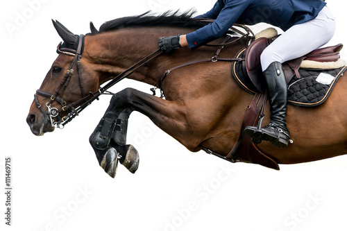 Poster Chevaux Horse Jumping, Equestrian Sports, Isolated on White Background