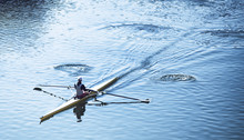 Person Sculling In A Racing Ca...