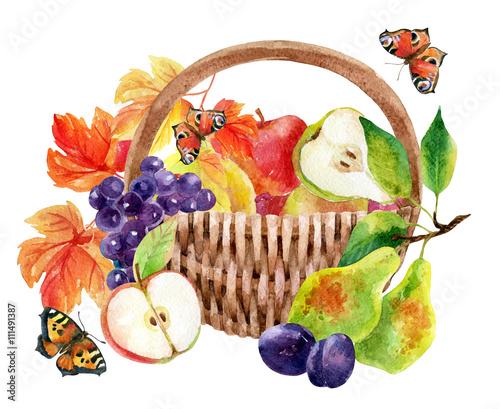 owoce-i-jagody-w-koszyku