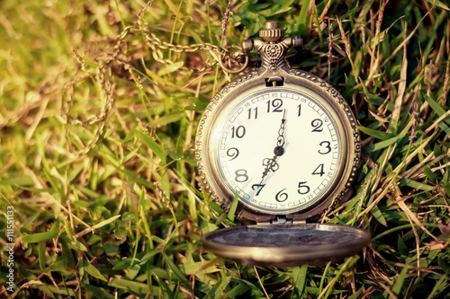 Photo  Vintage pocket watch with green grass