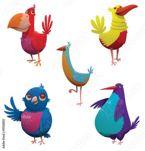 tropikalne-ptaki-w-roznych-kolorach-na-bialym-tle