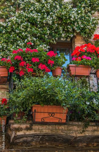 Finestra e balcone addobbati con vasi di fiori buy this for Finestra con fiori disegno