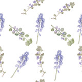 Pattern purple flowers. Field flowers, fine grass pattern watercolor - 111581332