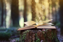 Open Book Outdoor. Knowledge I...