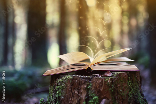 Open book outdoor Canvas-taulu
