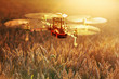 canvas print picture - Drone Surveying Wheat Field