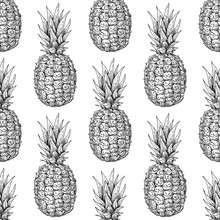 Vector Hand Drawn Pineapple Seamless Pattern. Tropical Summer Fruit Engraved Style Illustration.