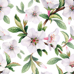 Fototapeta Vintage Seamless pattern with watercolor illustrations of cherry flowers