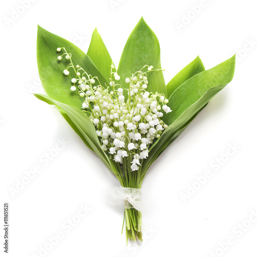 Poster Muguet de mai Bouquet of lilies of the valley on whiteу background