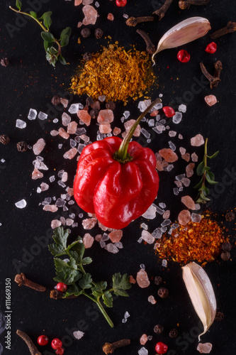 Fototapety, obrazy: fresh peppers of different colors with pink salt, garlic, ground spices, dill, parsley, thyme on the stone. burning spices. Background  view from above. picture with vintage processing in low key