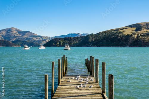 Foto auf AluDibond Stadt am Wasser Jetty in Akaroa, south island of New Zealand.