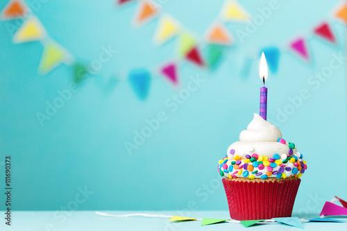 Birthday cupcake Canvas Print
