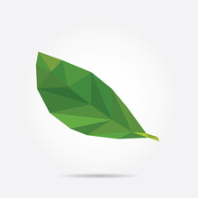 Green Leaf. Polygonal Green Le...
