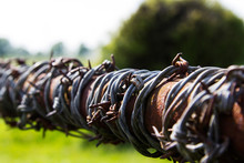 Close Up Of Barbed Wire On A F...