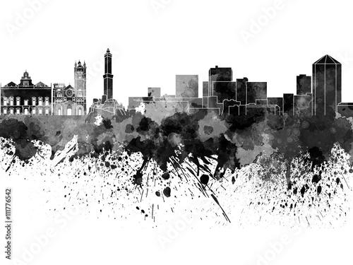 genui-panorame-w-czarnej-akwareli