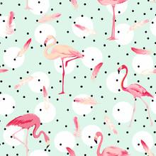 Flamingo Bird Background. Flam...