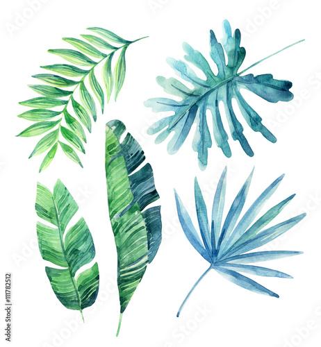 zestaw-akwarela-tropikalny-lisci