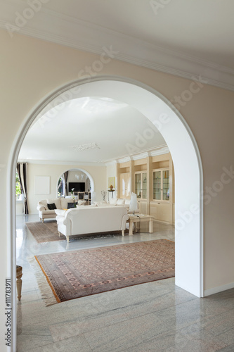 Fényképezés  living room in luxury house