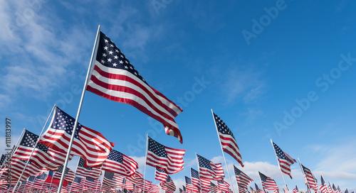 Fotografia  Field of American Flags