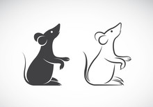 Vector Of A Rat Design On White Background. Animals.