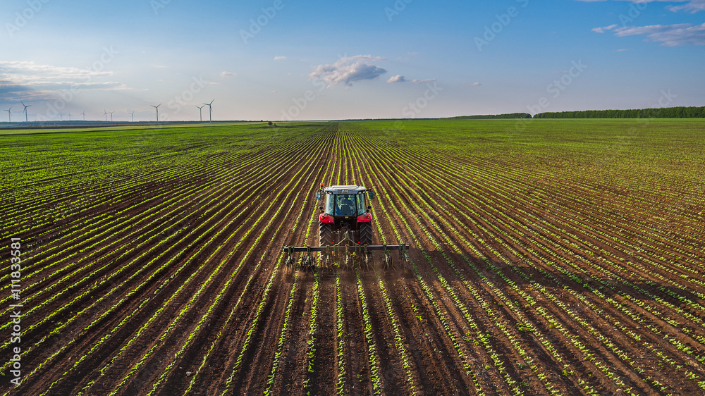 Fototapety, obrazy: Tractor cultivating field at spring