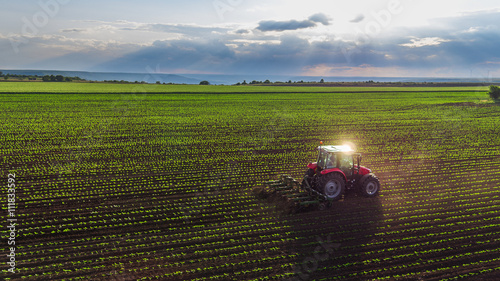 Vászonkép Tractor cultivating field at spring