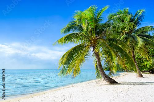 Akustikstoff - Sommer, Sonne, Strand und Meer