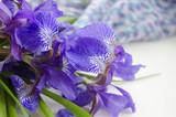 Iris flower. Bouquet of iris. Petals of a flower of an iris. Purple iris close-up