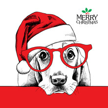 The Christmas Poster Dog Basset Hound Portrait In The Santas Hat And Glasses. Vector Illustration.