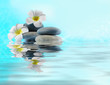 Spa stones and flower on water