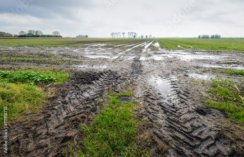 Staande foto Platteland Tire tracks in a wet field