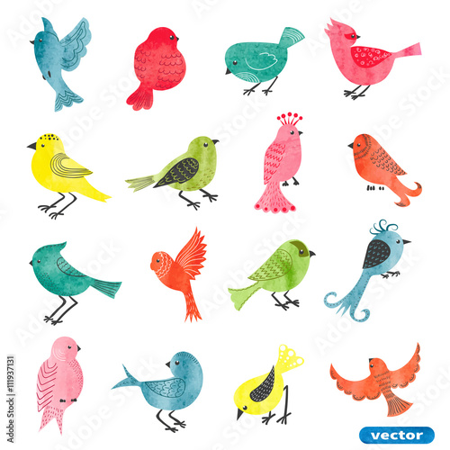 Watercolor birds set Poster