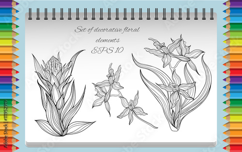 Three isolated black and white flowers. Coloring page in a ...