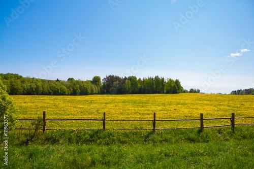 Fényképezés Corral for farm to livestock