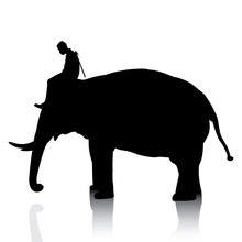Vector Silhouettes Of Elephant And Mahout Young Boy On White Background