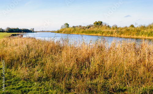 Canvas Print Banks of a river on a windless winter day