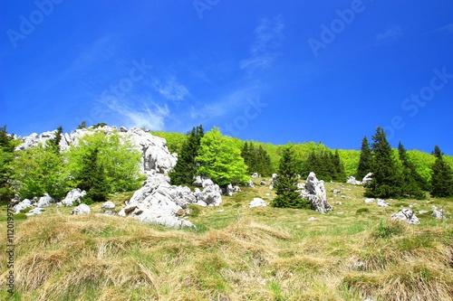 Fotografie, Obraz  Wild mountain landscape on Velebit mountain in Croatia