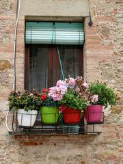 Fototapeta na wymiar ventana con flores