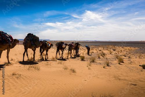 Spoed Foto op Canvas Marokko trade caravan in the desert.