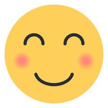 Blush Smiley Face - Flat Emoticon Design   Emojilicious