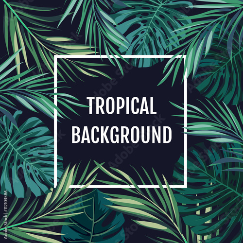 Summer tropical hawaiian background with palm tree leavs and exotic plants Wall mural