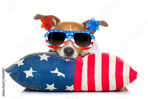 Fotografie, Obraz  fourth of july independence day dog