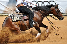 The Side View Of The Rider Sliding His Horse Forward On The Clay Field Raising Up The Clouds Of Dust
