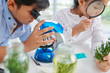 canvas print picture - Close-up image of pupils examining plants with microscope and magnifying glass