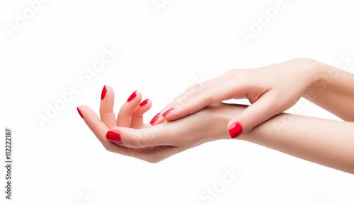 Fototapeta Piękne kobiece dłonie obraz
