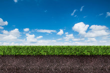 Green Grass With Soil On Blue Sky.